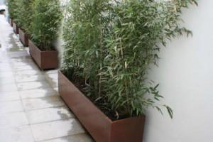jardinera-inicio1